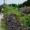 沖縄・竹富島旅行記1日目:竹富島での初昼食と集落散歩